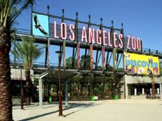 Don't leave Los Angeles without making it to the zoo.  Couponsforthezoo.com makes it easy and affordable to hit all the sites in L.A. without hitting your wallet.