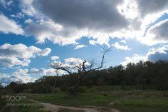 landscape by pankovanata via http://ift.tt/2et2Ppj