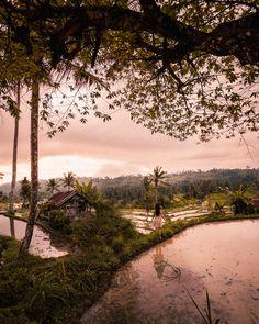 Read my 2 weeks travel itinerary White River Rafting, Uluwatu Temple, Gili Island, Bali Travel, Top Of The World, Ubud, Amazing Destinations, Beach Day, Planet Earth