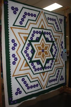 The Q and the U - Quilting Blog: Some Photos from the KVQG Show. 5100+ hexagons