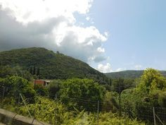 Хороший блог о кино и музыке, а тк же путешествиях: Остров Корфу радует природными и человеческими объ...