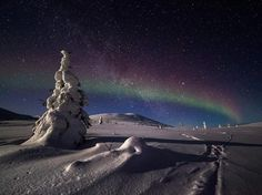 Picture of a snowy landscape at night in Lapland, Finland Photograph by Satu Juvonen, National Geographic Your Shot National Geographic Society, National Geographic Photos, Beautiful Places, Beautiful Pictures, Lapland Finland, Night Photos, Great Night, Night Skies, Land Scape