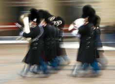 The Royal Guard by Soeren Friberg