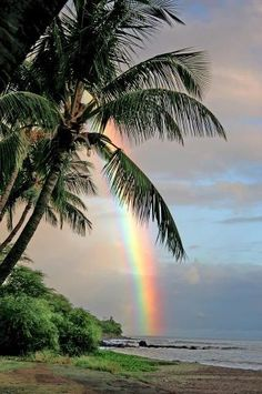 "Hawaii has to be ""Rainbow Central"" Never did a day go by that I didn't see a rainbow."