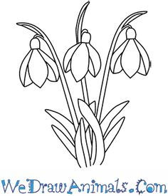 Flower Gardening For Beginners Photo about Floral art design background. Illustration of floral, flower, gardening - 18102473 - Embroidery Stitches, Hand Embroidery, Embroidery Designs, Applique Patterns, Flower Patterns, Colouring Pages, Coloring Books, Stained Glass Patterns, Digital Stamps