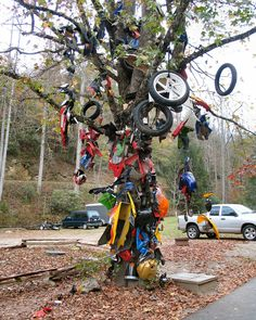 the Tree of Shame at Deal's Gap, North Carolina is festooned with parts from bikes wrecked on the Dragon, a stretch of US129 that has 318 curves in the span of 11 miles....motorcyclists, sports car enthusiasts, and other serious drivers come from all over the U.S. to take on the Dragon
