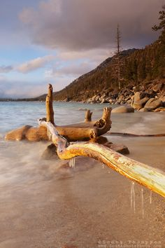 """Icicles at Lake Tahoe 3"" - These icicles on a log were photographed right before sunset on a beach just North of the Thunderbird Lodge at Lake Tahoe."