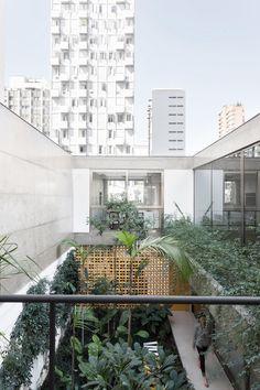 Oracle, Fox, Sunday, Sanctuary, Jardins, House, Urban, Jungle, Concrete, Industrial, Interior, City, balcony, view