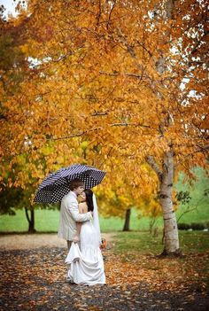 The umbrella photo would be much better with a purple or red umbrella.  Beautiful idea!