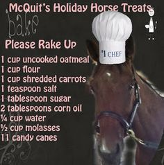 horse treats recipes - Google Search