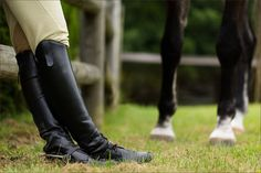 Equestrian Experience Portfolio » Pittsburgh Equine Photographer – Commercial Horse Photography