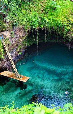heavy green over the entry hanging down------------------To Sua Ocean Trench in the Lotofaga village on the south coast of Upolu, Samoa