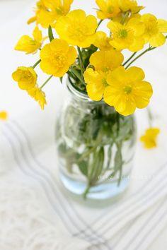 Yellow buttercups in old jar - simple flower arrangement! Cut Flowers, Fresh Flowers, Yellow Flowers, Wild Flowers, Beautiful Flowers, Vase Of Flowers, Simple Flowers, Table Flowers, Exotic Flowers