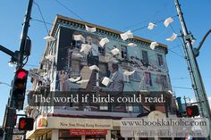 If Birds Could Read