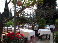 St Paul de Vence - La Colombe D'Or (Restaurant)..Bucket list item! Overlooking Nice and the Mediterranean Sea, the Cololmbe D'Or attracts the 'in crowd' and many celebrities like Hugh Grant and Elton John.