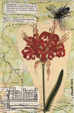 Postcard for Alice - #20 by dumpsterdiveranonymous