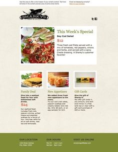 Example Predsigned Template Of Mailchimp Web Design - Mailchimp email template examples