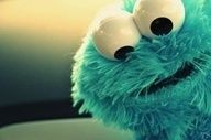 Blue cookie monster