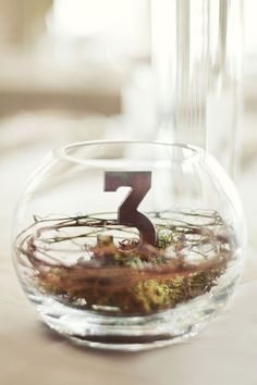 Table numbers are a necessary thing for every wedding that has more than five guests. Here is an ultimate guide to design perfect table numbers. Simple Centerpieces, Wedding Centerpieces, Wedding Decorations, Centerpiece Ideas, Table Decorations, Terrarium Diy, Terrarium Centerpiece, Wedding Reception, Rustic Wedding