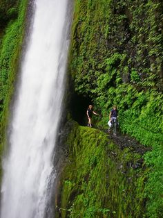 Tunnel Falls - Eagle Creek Trial, Oregeon Columbia River Gorge, Travel Bugs, Us Travel, Vacation Destinations, Vacation Spots, Oregon Vacation, Vacations, Places To Go, Places To Travel