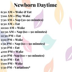 how to get a newborn on a schedule