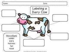 Parts Of A Cow, Farm Theme, After School, Little People, Farm Animals, Teaching Resources, Lesson Plans, Kindergarten, Teacher