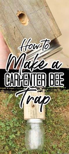 Learn how to make your own carpenter bee trap from a scrap and a mason jar We have your wood bee trap plans to start making your own versions today outdoors bees carpenterbees trap farm diy diyproject Woodworking For Kids, Woodworking Projects, Woodworking Furniture, Woodworking Beginner, Intarsia Woodworking, Woodworking Classes, Plywood Furniture, Modern Furniture, Furniture Design