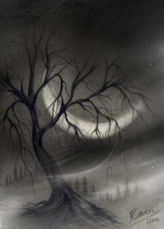 Tree in Charcoal @ deviantart