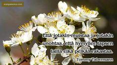 Tabermann Plants, Tomy, Plant, Planets