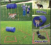 Think I might try to create these just for additional exercise and fun in the backyard!