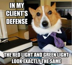 515 Best Lawyer Humor Images In 2020 Lawyer Humor Humor Legal