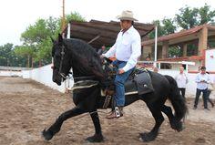 Conoce a detalle el #Perfil de 'El Bronco', entre el campo, las balas y el Facebook http://mile.io/1KkOSWd