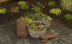 Maricopa County Home Shows: Create a Container Water Garden Container Pond, Container Water Gardens, Container Gardening, Bog Plants, Potted Plants, Galvanized Tub, Wash Tubs, Water Pond, Holding Flowers