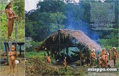 Viaje a la Amazonía