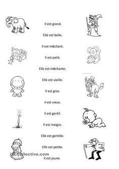 distinguer les formes des adjectifs masculins et feminins - Fiches FLE