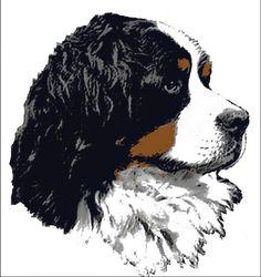 Bernese Mountain dog~ gorgeous