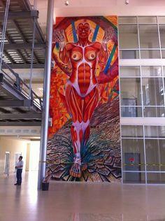 """Mural """"Pilares de Vida"""" Hidalgo del Parral Chihuahua"""