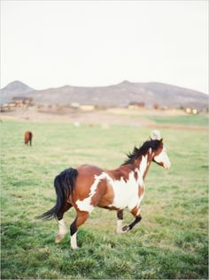 Brasada Ranch in Bend, Oregon #weddingvenue #erichmcveyworkshop #horse http://www.weddingchicks.com/2013/11/11/erich-mcvey-workshop/