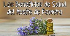 He aquí la interesante información sobre el fragante y versátil aceite de romero, incluyendo sus beneficios, usos y composición. http://articulos.mercola.com/aceites-herbales/aceite-de-romero.aspx