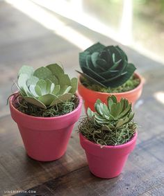 Patrones y tutoría para suculentas de papel   -   Patterns and Tutorial for Paper Succulents