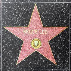 bruce lee, enter the dragon, ufc, mma, martial arts, mixed martial arts
