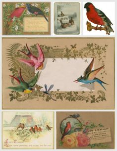 Vintage bird inspired printables would look lovely with packages wrapped in brown paper.