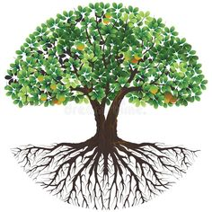 Banyan Tree Bonsai, Tree Of Life Logo, Life Cycle Craft, Tree Of Life Painting, Tree Illustration, Vector Illustrations, Tree Images, Tree Logos, Photo Charms