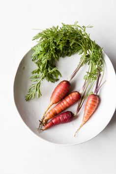 Burnt Carrots | Photography and Styling by Sanda Vuckovic food photography, food styling, learn food photography