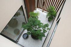 家じゅうから瑞々しい緑を望める中庭のある家 もっと見る