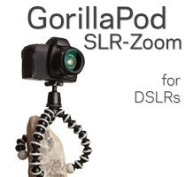 Gorillapod - Grip tripods that come in all shapes and sizes for all camera types. Very cool!