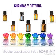 CHAKRAS y DōTERRA : chakra 1 raíz (balance ) chakra 2 sexual (citrus Bliss) chakra 3 plexo solar (digest zen ) chakra 4 corazón (breathe) chakra 5 garganta (whisper) chakra 6 frontal (serenity) chakra 7 corona (elevation) Essential Oils Guide, Doterra Essential Oils, Essential Oil Blends, Doterra Whisper, Doterra Breathe, My Doterra, Doterra Blends, Citrus Bliss Doterra, Doterra Elevation