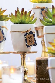 Give a garden wedding a modern edge with a tableful of sleek, green succulents. Simply stage a beautiful arrangement surrounded by these ready-to-go petite white pots. Want to make them double as favors? Tie on handmade tags to proclaim the wedding date and the names of the bride and groom.