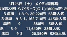 3月25日(土) メイダン競馬場ヴィブロス(JPN)
