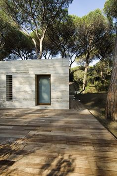 Pinewood of Marina / Massimo Fiorido Associati   sundaymorning